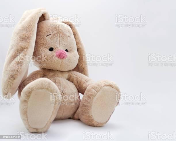 The soft toy bunny sits on a bright background picture id1203062063?b=1&k=6&m=1203062063&s=612x612&h=t7gvabbfgtmjcxa5rjszvj qxjafynj6qkcpaf cxrc=