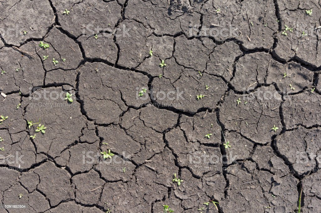 The soil in the desert with cracked by drought.