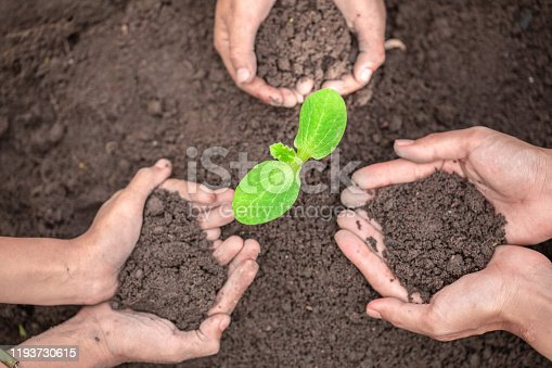 The soil in the hands of parents and children.Conserve the environment by planting trees. and protect with plant growing. The concept of the Earth Day environment is in the hands of a growing tree.