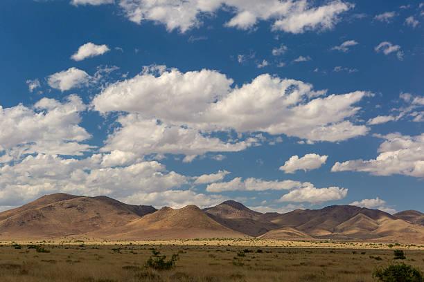 the Sonora desert in Mexico stock photo