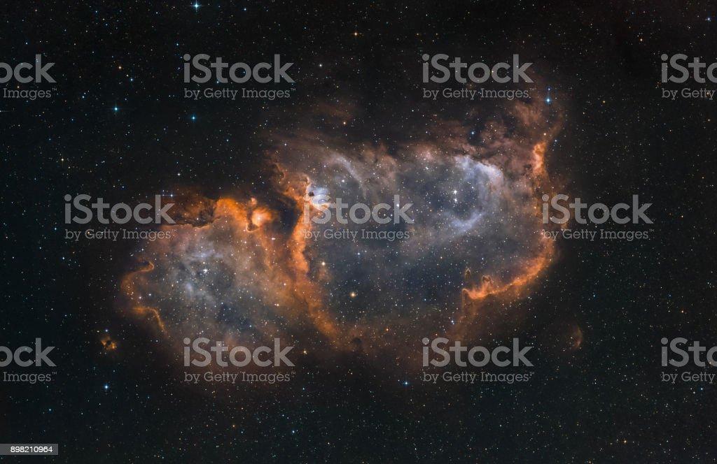 Der Seele-Nebel im Sternbild Cassiopeia (schmalbandiges Licht) – Foto
