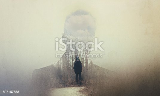 istock The soul seeks its own path 527167533