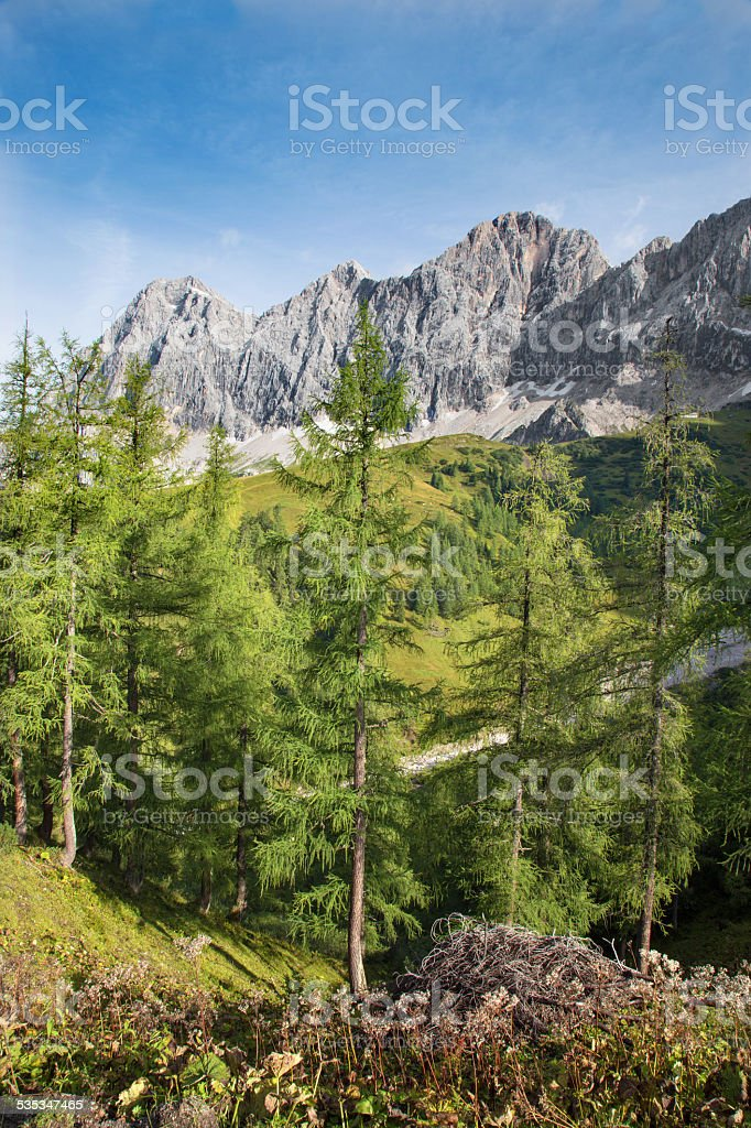 The south face of Dachstein massif stock photo