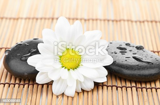 459851883 istock photo The spa a stone on bamboo background 463069593