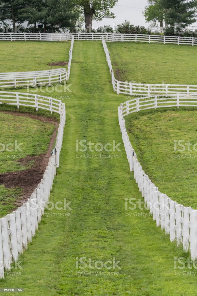 The Space Between the Paddocks stock photo