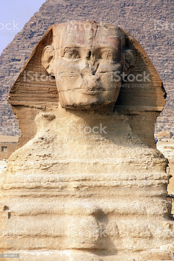 the sphinx  close-up face royalty-free stock photo