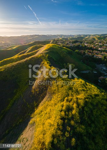 Spring super bloom in Santa Monica Mountains, California, West Coast, USA. Aerial photo.