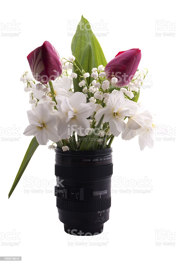 the spring flowers are in vase on a white background royalty-free stock photo