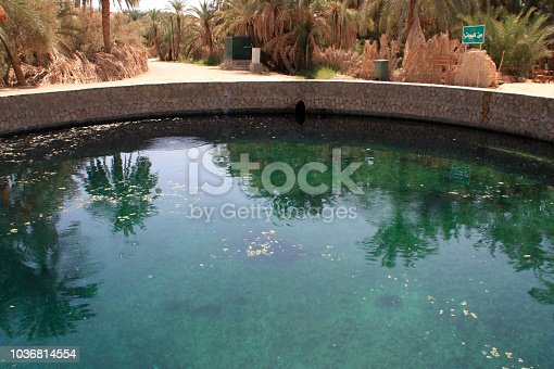 istock The Spring of Juba, Cleopatra's Pool, at the Siwa Oasis, Egypt 1036814554