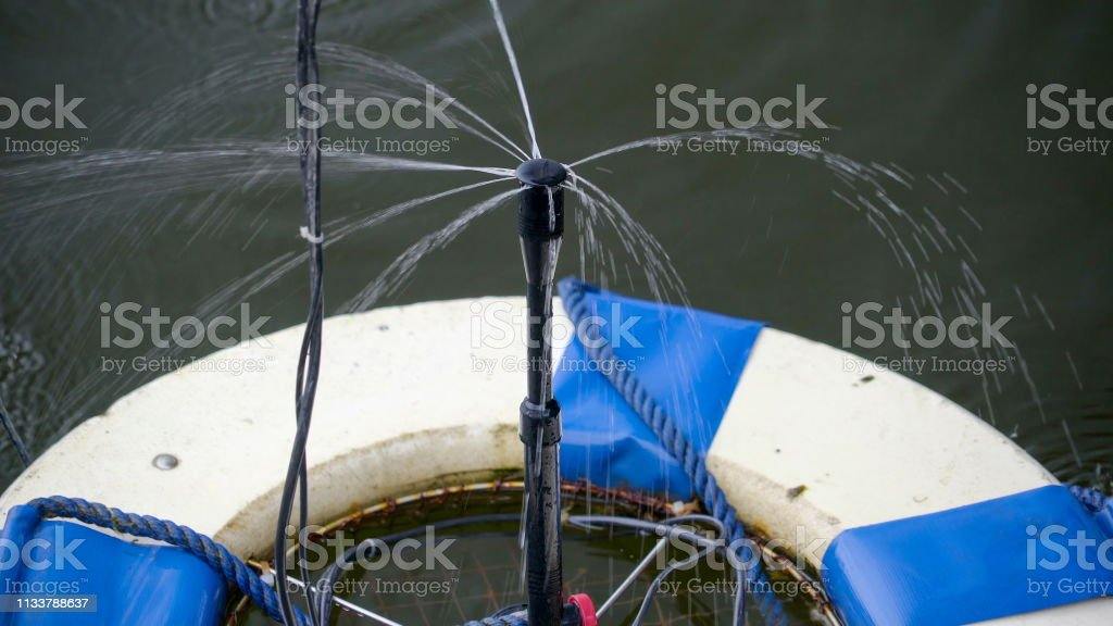 The sprouting water on the hose stock photo