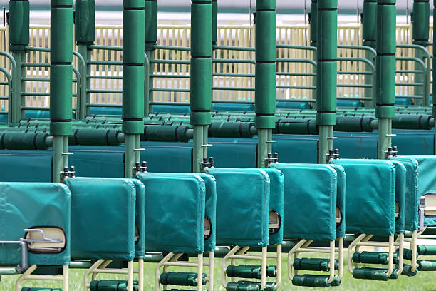 The Starting Gate Close up shot of an empty starting gate. sha tin stock pictures, royalty-free photos & images