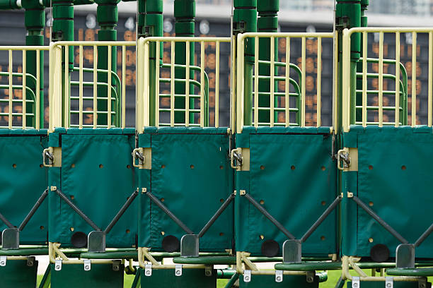 The Starting Gate  sha tin stock pictures, royalty-free photos & images