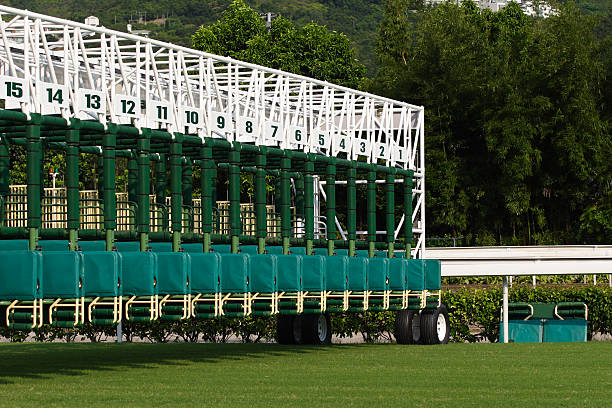 the starting gate - racehorse track bildbanksfoton och bilder