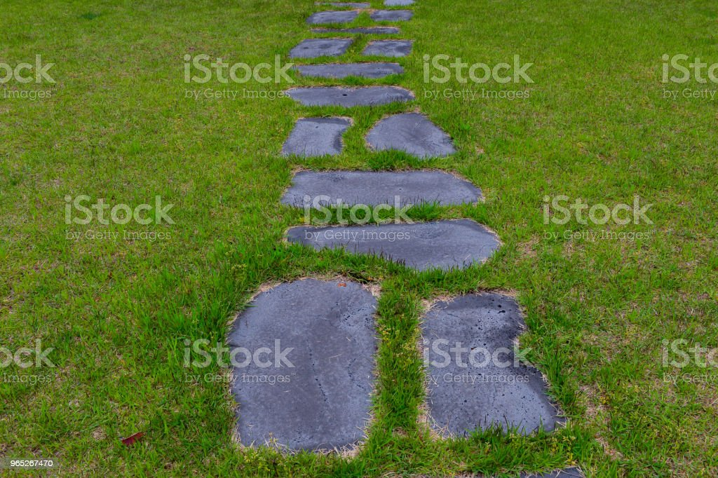 The Stepping-stones on the green grass in front of door. zbiór zdjęć royalty-free