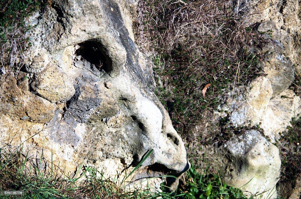 The Stone Dragon royalty-free stock photo