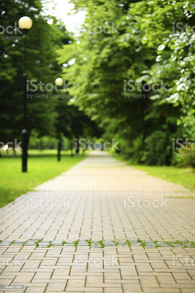 The stone path in park. royalty-free stock photo