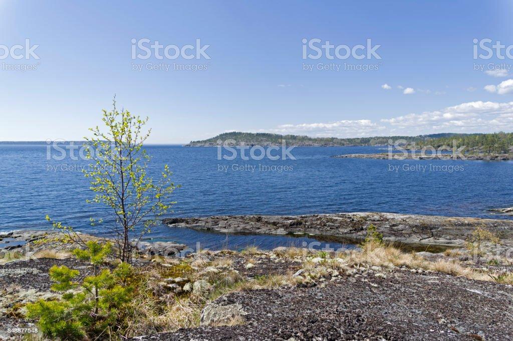 The stony shore of the Ladoga Lake stock photo