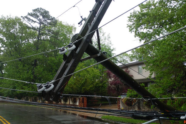 The storm caused severe damage to electric poles falling tilt. The storm caused severe damage to electric poles power lines over a road after Hurricanepoles falling tilt. knocked down stock pictures, royalty-free photos & images