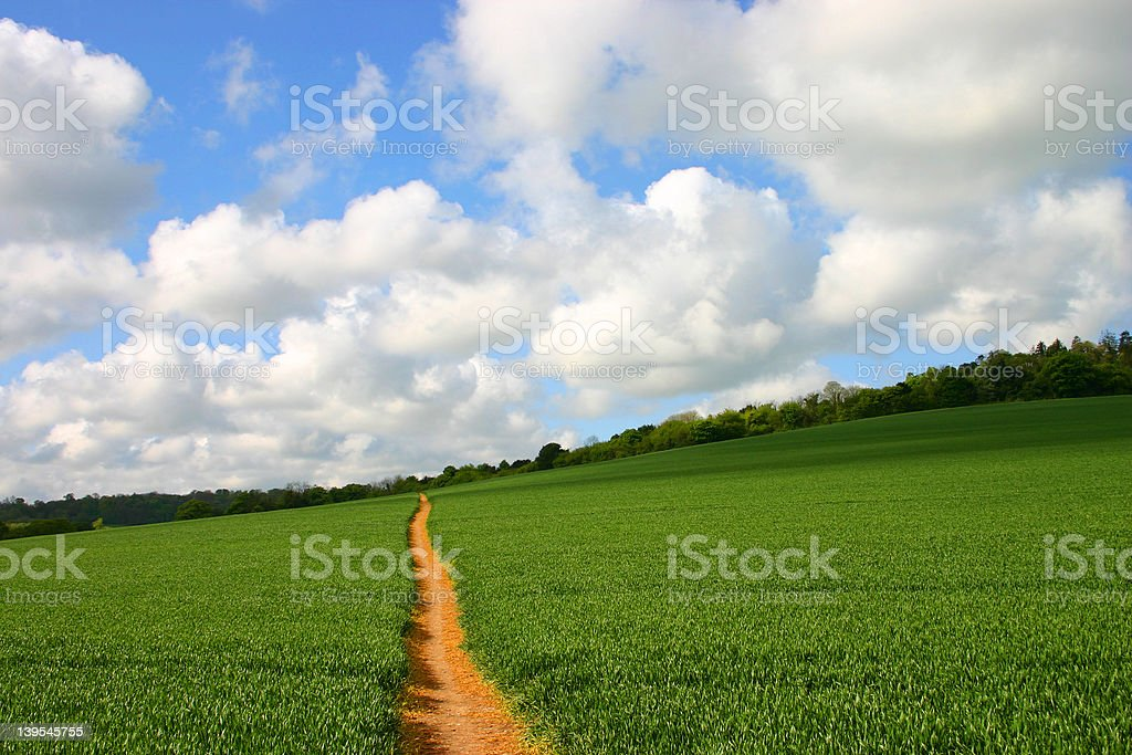 The Straight and Narrow Path royalty-free stock photo