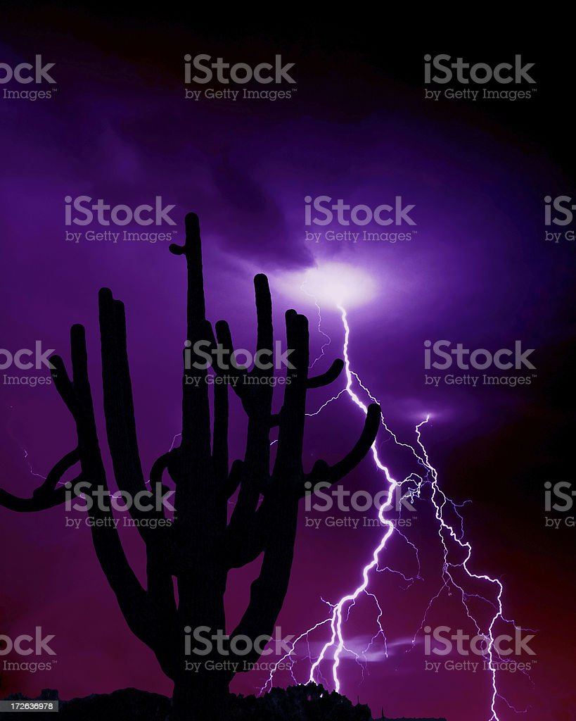 The Strike royalty-free stock photo