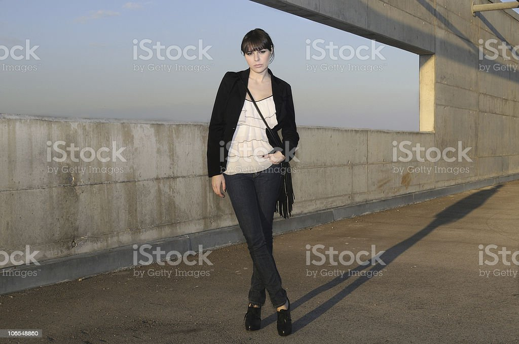 The Stylist royalty-free stock photo