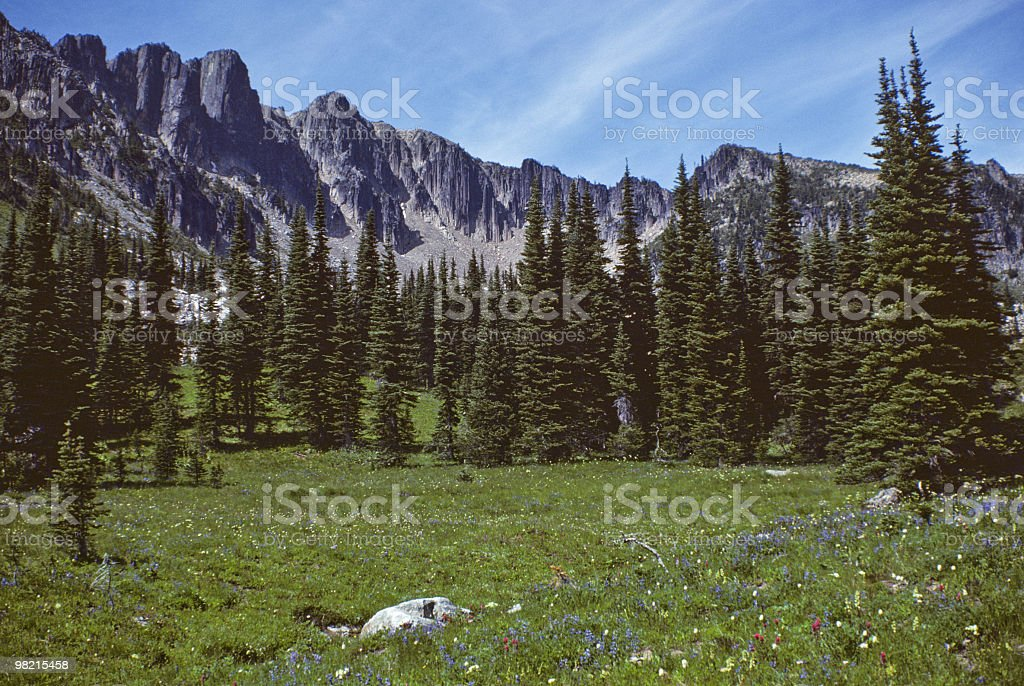Meadow and Trees Below the Palisades royalty-free stock photo