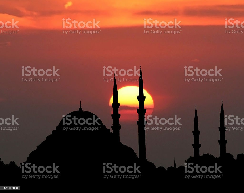 The Suleiman's Mosque - I royalty-free stock photo