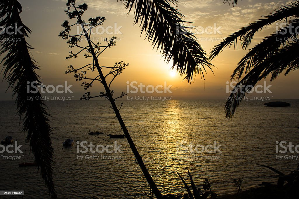 the sun approaches to water blushing with emotion foto royalty-free