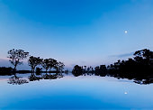 The rural environment of India during sunset. Moonlight, clear blue sky and reflection of green trees.