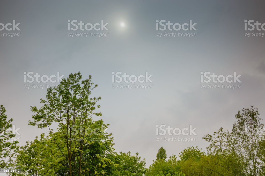 The sun is behind gray clouds. Green trees 免版稅 stock photo