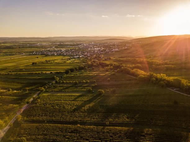 die sonne versinkt in eisenstadt im burgenland österreich - burgenland stock-fotos und bilder