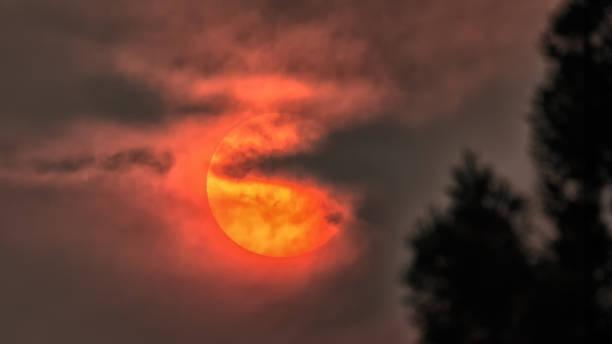Rauchen Sie die Sonne verdeckt von Wildfire, Humboldt County, Kalifornien – Foto