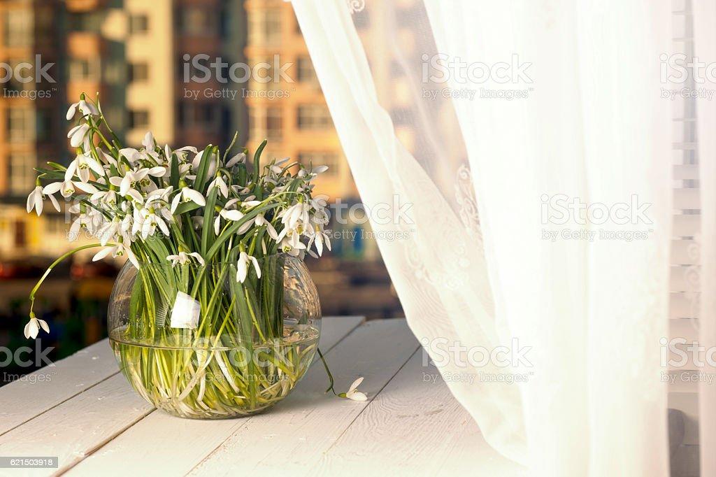 Le soleil sur le rebord de fenêtre délicat bouquet photo libre de droits