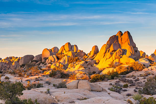 The sun setting over Joshua Tree National Park Joshua Tree National Park, Mojave Desert, California mojave desert stock pictures, royalty-free photos & images