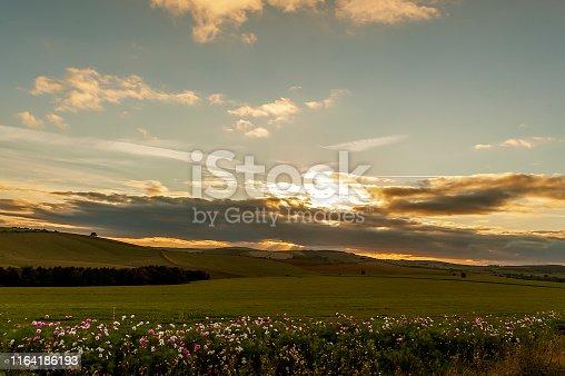 Warm scenery of the setting sun - countryside