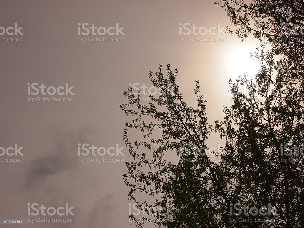 The sun shines through clouds stock photo