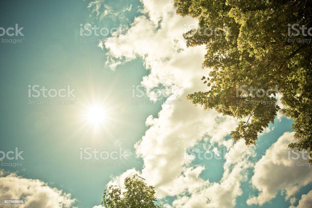 The sun shining stock photo