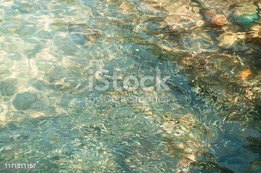 The sun shone through the stream on the pebble