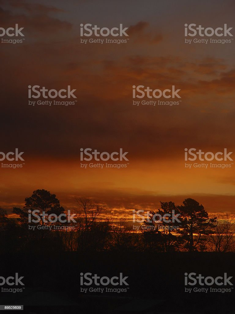 The sunrise royalty-free stock photo