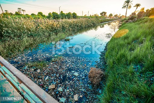 The sunset over the canal is polluted by rubbish and plastic between the palms