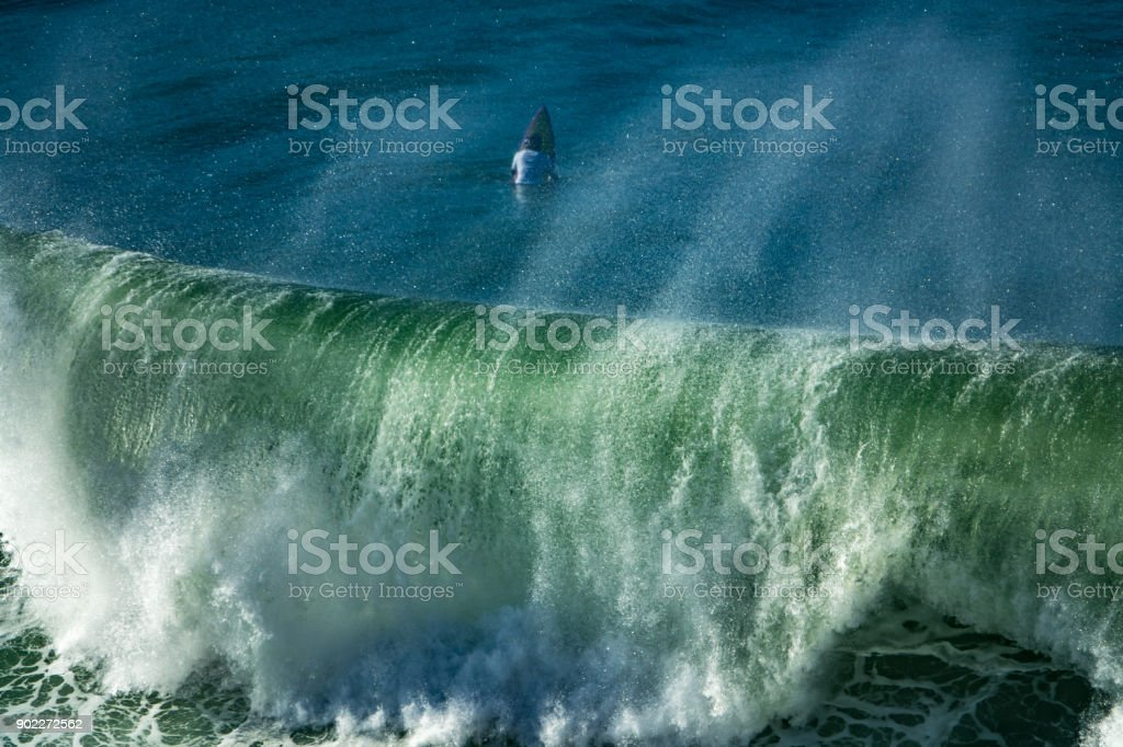 The surfer and the wave stock photo