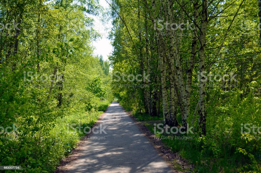 The surrounding countryside of Berlin royalty-free stock photo