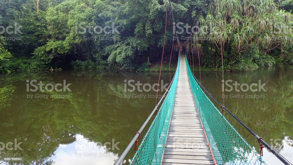 The suspension bridge over the lake at Rainforest Discovery Centre stock photo