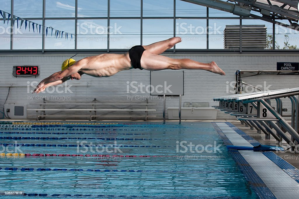 The Swimmer royalty-free stock photo