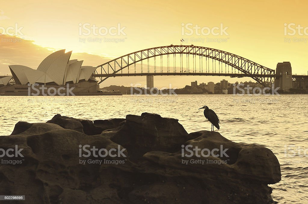 The Sydney skyline stock photo