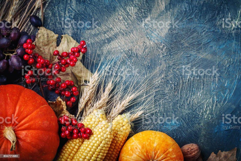 Pumpkin Apple Grape Harvest Patch Fruit Food Quilting Cotton Fabric BT YARD q