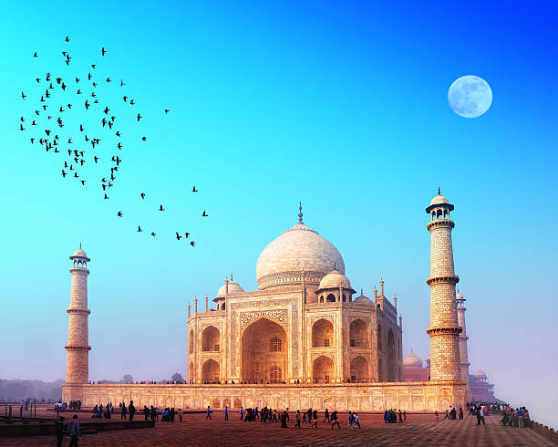 The Taj Mahal at sunset with birds flying over Taj Mahal Palace in India taj mahal stock pictures, royalty-free photos & images