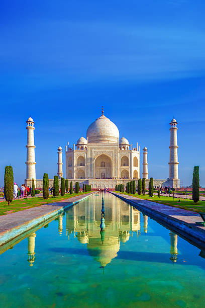 the Taj Mahal in the morning Taj Mahal, Agra, India in the lights of the rising sun taj mahal stock pictures, royalty-free photos & images