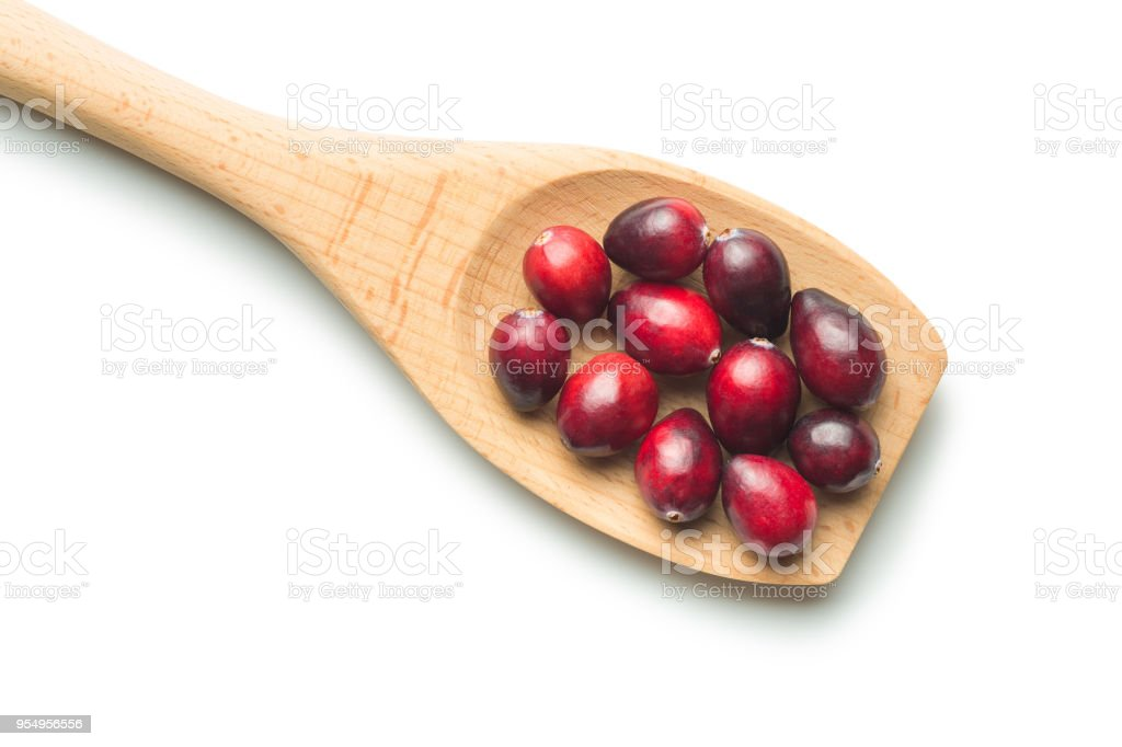 The tasty american cranberries stock photo