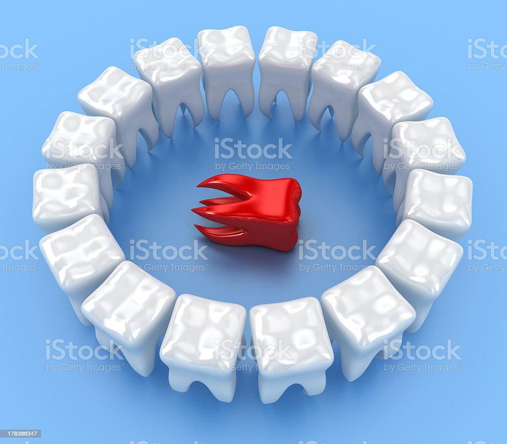 The teeth royalty-free stock photo